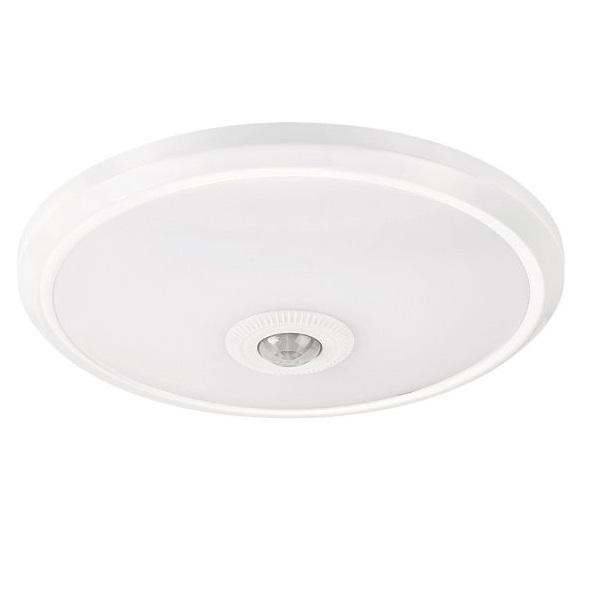 LED stropní svítidlo Gabriel 12W 2498